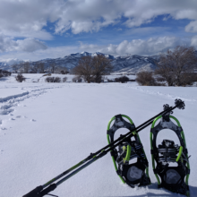 Pasture Snowshoeing